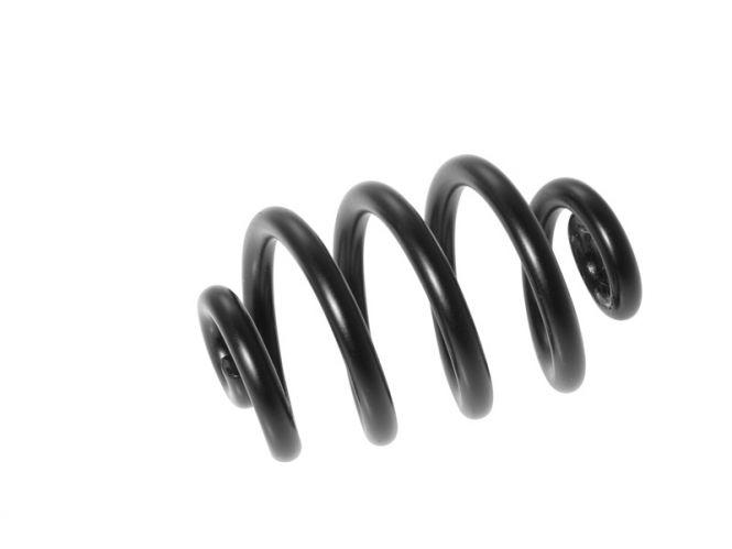 Brooks Spiralfeder schwarz rechts BYB 250